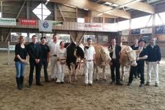 Vache Expo à Martigny - avril 2017