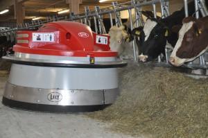 Juno : robot d'affouragement  qui pousse le fourrage dans les crèches des vaches toutes les 2h.